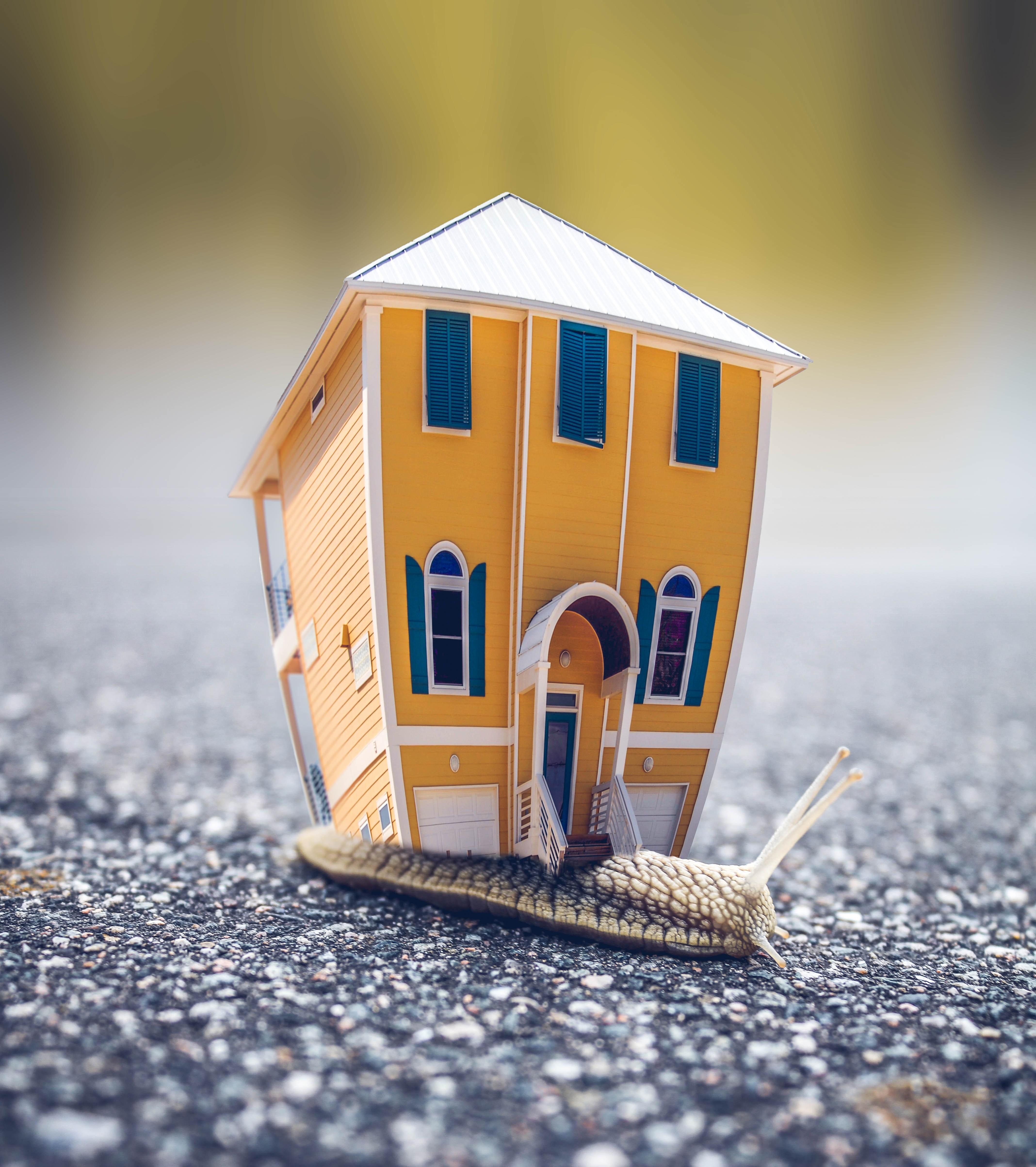 Leningen in hypotheek